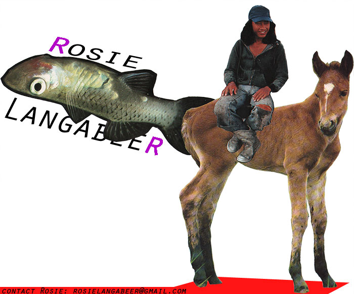 Welcome to Rosie Langabeer Dot Com! This is a picture of a donkey and a fish.
